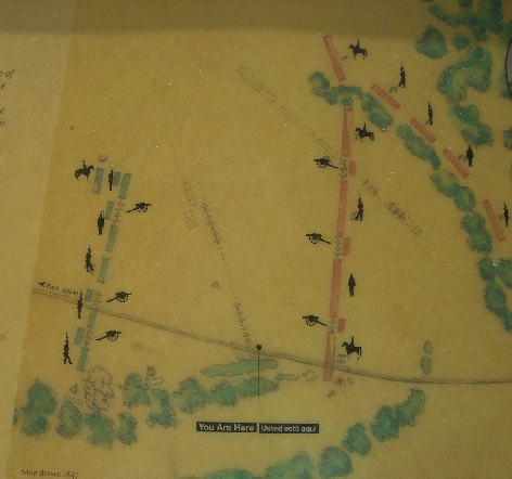 Map of the Palo Alto Battlefield