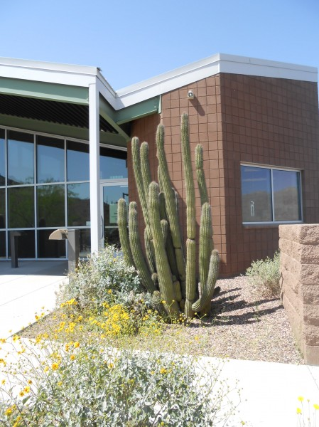 Picacho Peak State Park's Visitor Center