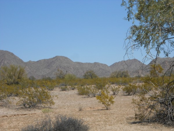 Maricopa Mountains
