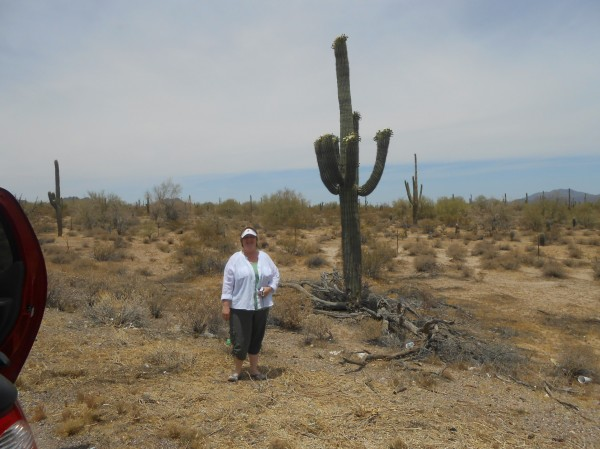 AnnaMarie tiptoes through the cactus